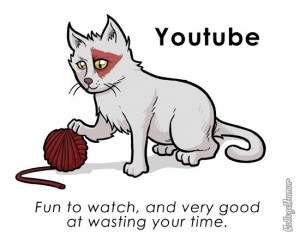 YouTube, pet, cat